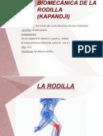 BIOMECÁNICA DE LA RODILLA.pptx