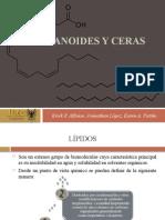 6.-EICOSANOIDES-Y-CERASter