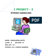 PROJ 2 String Handling