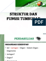7. Struktur Dan Fungsi Tumbuhan