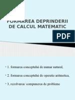 Formarea Deprinderii de Calcul Matematic