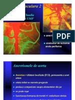 Patologie vasculara 2
