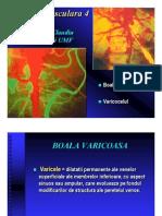 Patologie vasculara 4