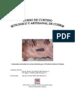 Curtido_cueros.pdf
