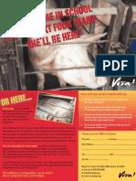 VIVA USA College Leaflet