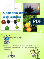 presentacionciclodelcarbono 7