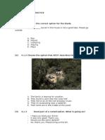 Rosetta Practice Level 4 Siglo21