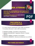 Protura-uterina