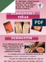 Dermatopatias (Dermatitis y Tineas)