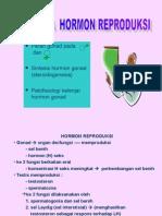 Kuliah 10b - biokimia Hormon Reproduksi.ppt
