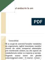 44539084 Sistemul Endocrin La Om Real II Parte