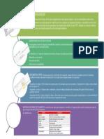 Aporte1_CarmenValencia.pdf