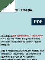 05.Inflamatia