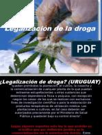 afavordelalegalizacindeladroga-100915233544-phpapp02