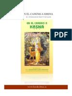 En El Camino a Krishna