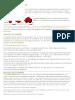 quimica temas.docx
