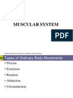 Anaphy Lab Muscular System PDF