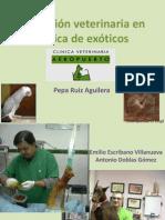 2. Actuacion Veterinaria en Animales Exoticos