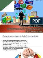 Factores Que Influyen Positivamente El Comportamiento Del Consumidor