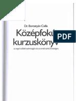 Borostyán Csilla - Középfokú kurzuskönyv az angol szóbeli nyelvvizsgára
