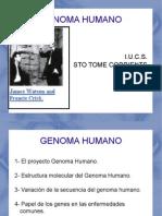 GENOMA HUMANO 1.ppt