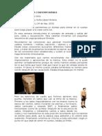 Diario de Danza Contemporánea Sofia Lopez