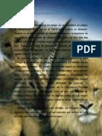 Sobre La Extinción de Las Especies