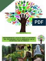 Instrumentos legales para la defesnsa del patrimonio ambiental