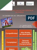 Cultura Organizacional Curso de Gestión