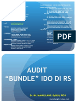 Audit Bundle Ido