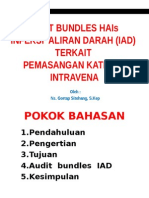 Audit Bundles Hais Iad