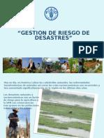 ppt_Gestion de Riesgo de Desastres_GEMP Workshop.ppt