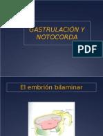 embrion-trilaminar.ppt