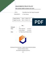 laporan CSTR