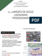 Aparato de Golgi, Lisosomas y Peroxisomas