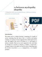Differences Between Myelopathy and Radiculopathy