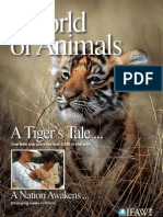 "World of Animals - Issue 3 ""A Tiger's Tale"""