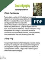 4_biostratigraphy.pdf