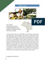Tribo Brasileira Arara