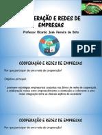 Cooperação e Redes de Empresas_ Aula 04