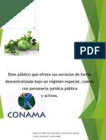 Impacto de las Normas medioambientales en la economía.