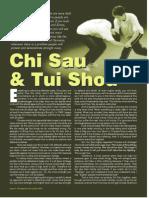 Tse ChiSauAndTuiShou Q80