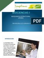 lipidos - Bioquimica Estructural Parte i