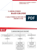 Organizacion Labt Bg UGUYG