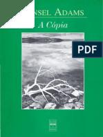 Ansel Adams a Copia
