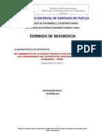 TERMINOS DE REFERENCIA.doc
