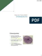 Tema-12-Citoesqueleto.pdf