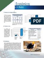 20 Datos Economicos Madera