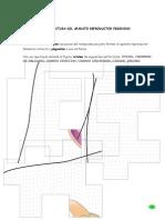 Estructura Del Aparto Reproductor Femenino