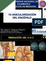 10-Vascularización Encefalo-2015.pdf